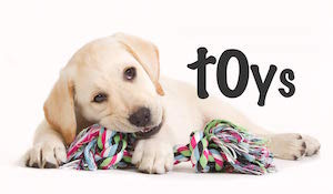 Benefits of Chew Toys
