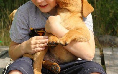 Puppies & Children